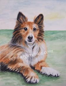 Lassie383x500px